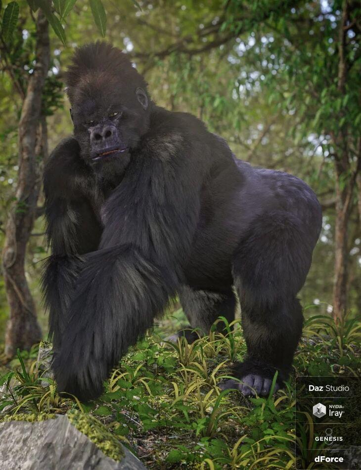 Gorilla for Genesis 8 Male