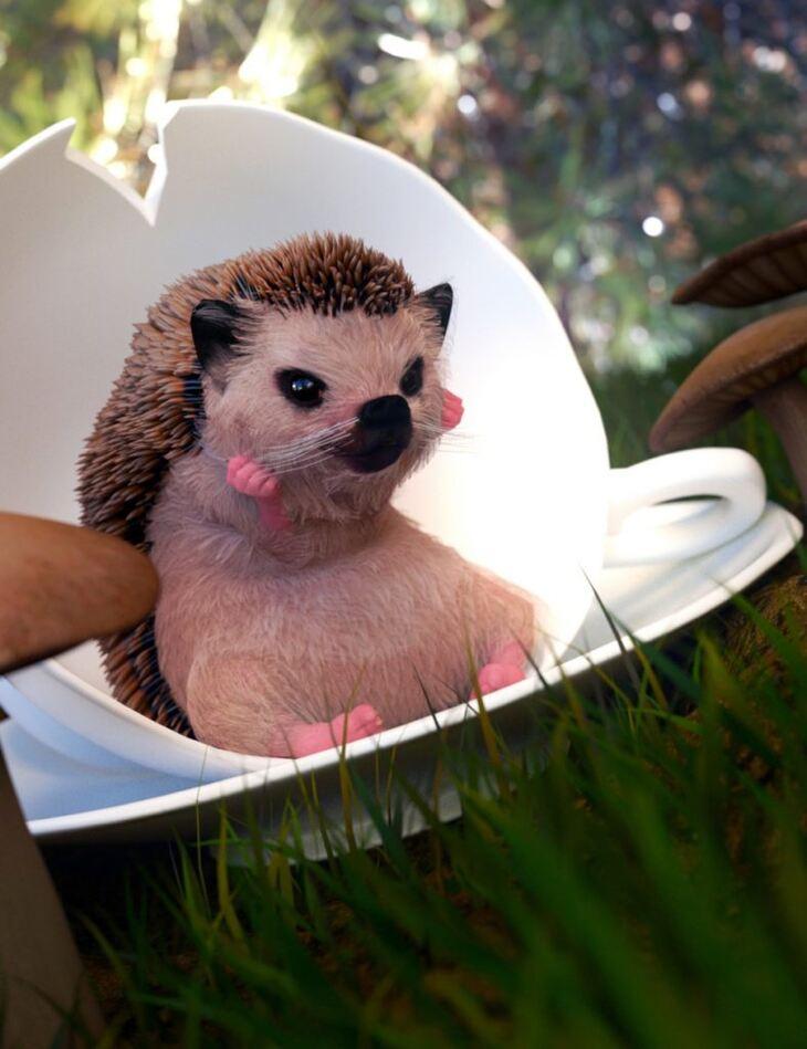 Ms Hedgehog for Genesis 8 Female
