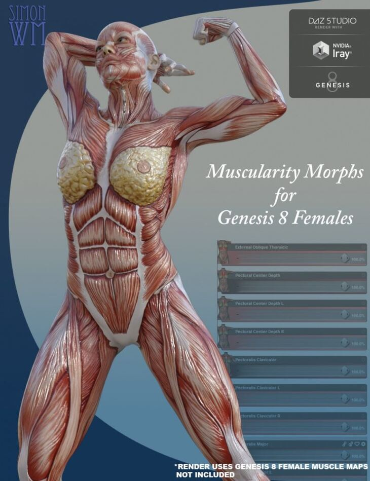 Muscularity Morphs for Genesis 8 Female(s)
