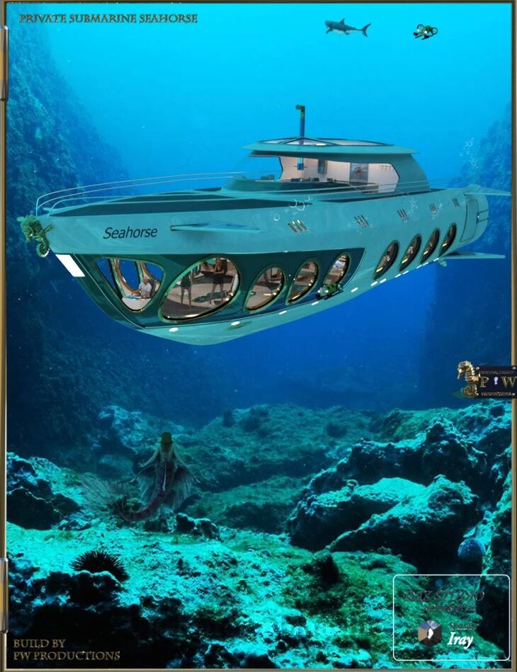PW Private Submarine