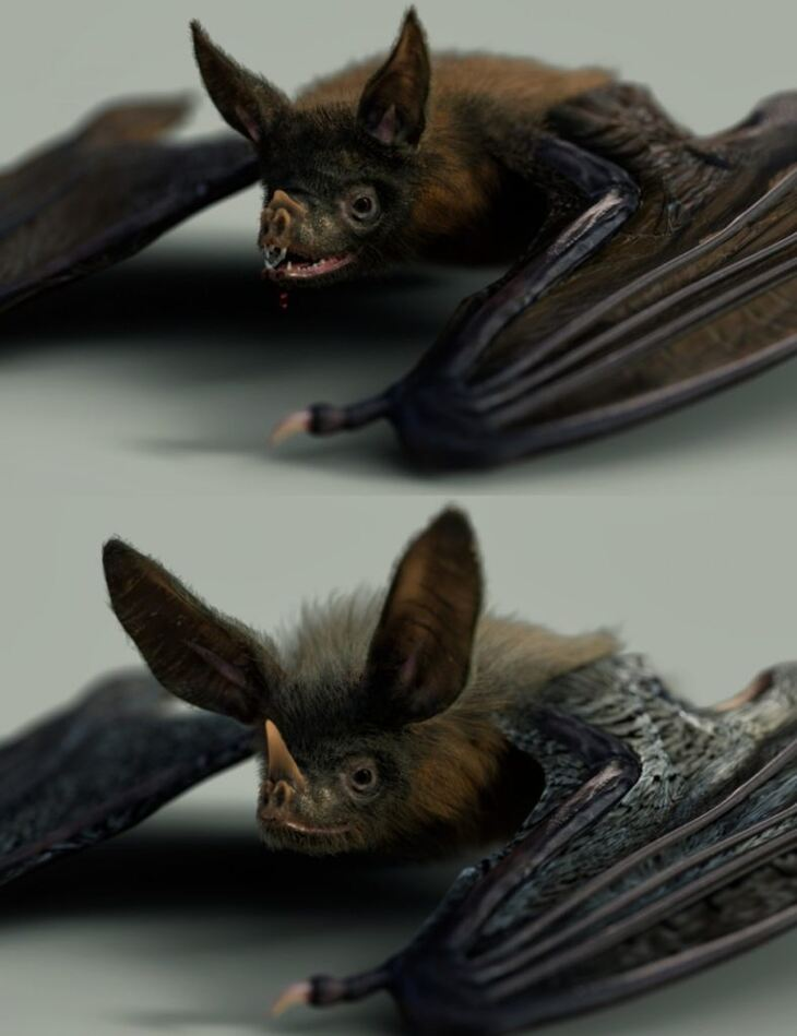 Vampire Bat by AM