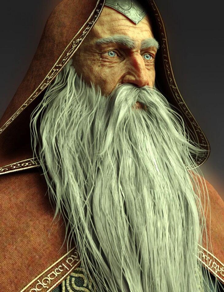 Wise Wizard Beard for Genesis 8 Male(s)