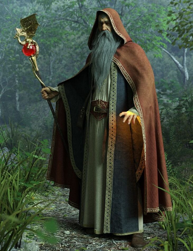 dForce Wise Wizard HD Clothes for Genesis 8 Male(s)
